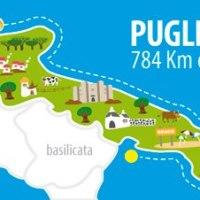 Innamorarsi del Pesce Spada in Puglia